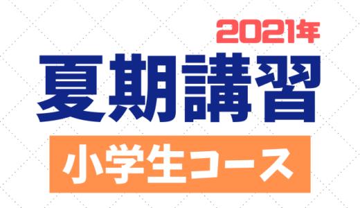 【小学生】2021年夏期講習のご案内|講座内容・申し込み方法